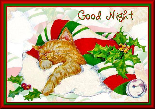 Kitten Santa HatTaGood Night