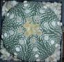 Astrophytum asterias cv. 'OOIBO'