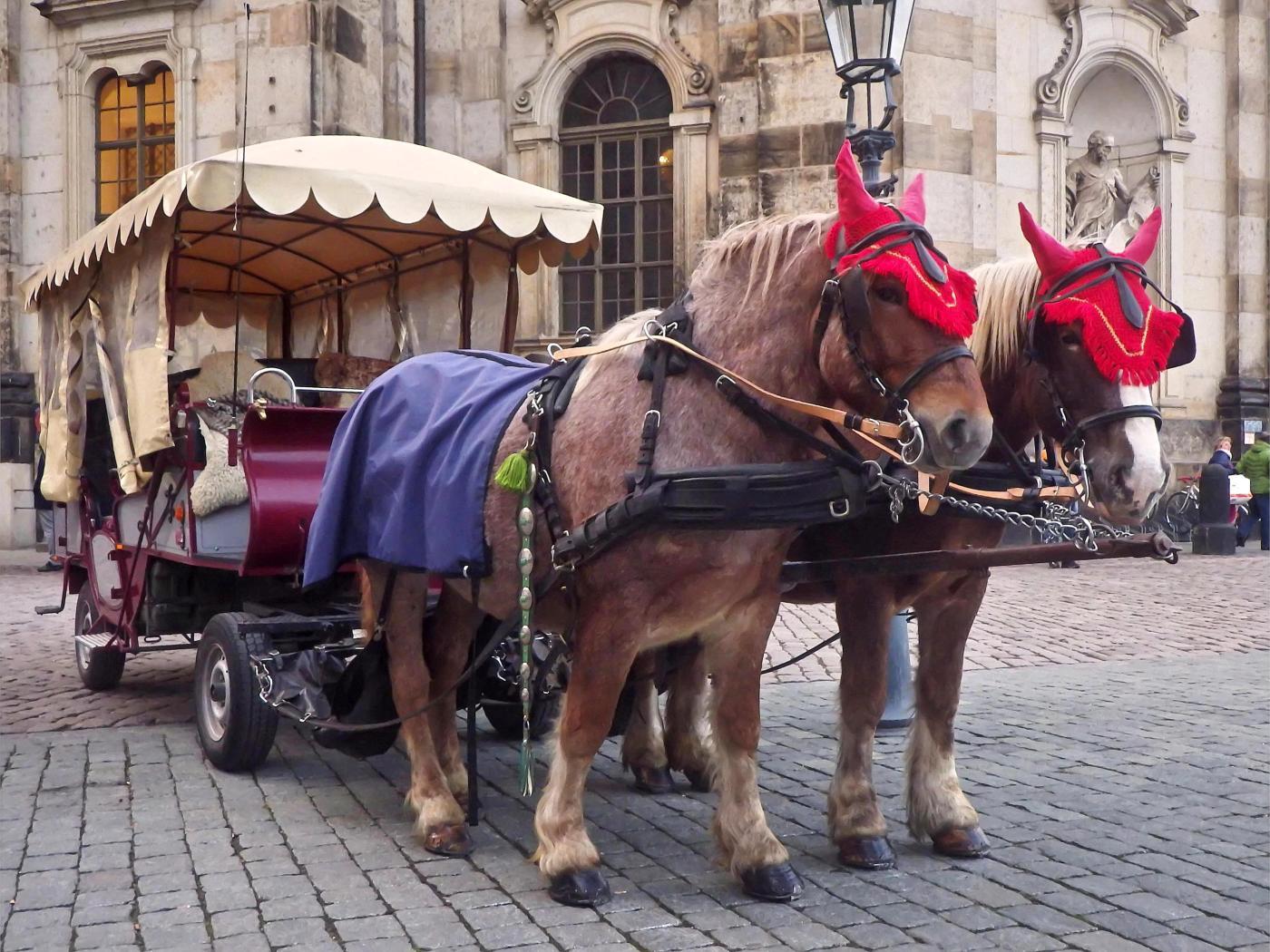Pfuhrwerk auf dem Schlossplatz