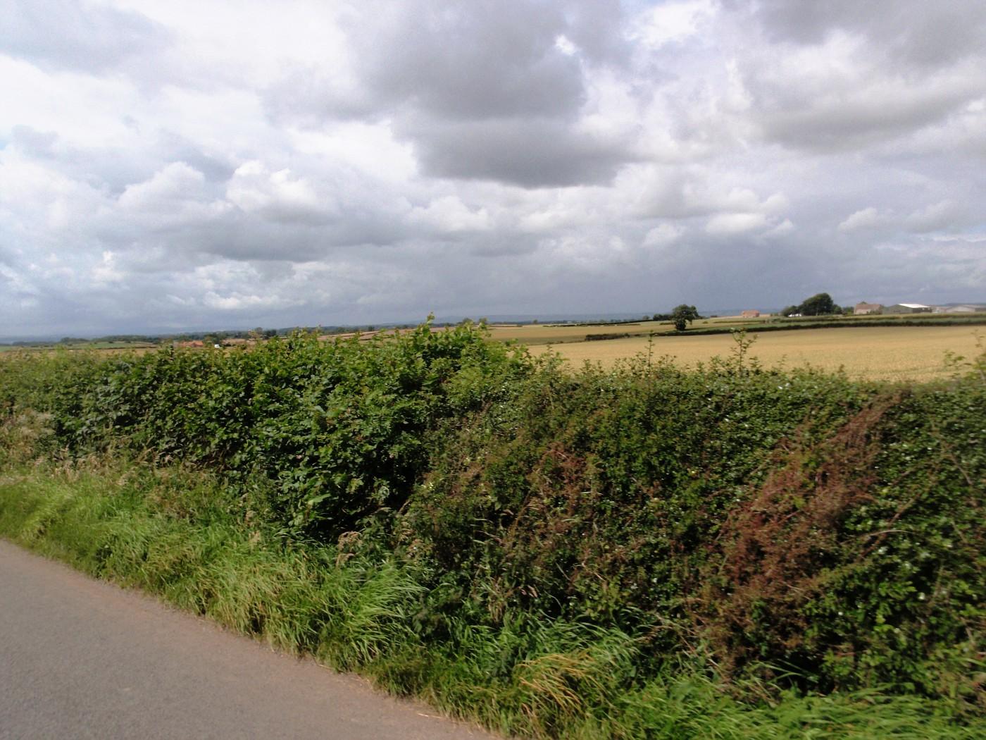 Landscape of North Yorkshire, England