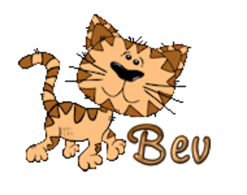 Bev - CuteCatWalking