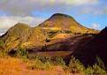 OROMYA - Menegesha Suba State Forest