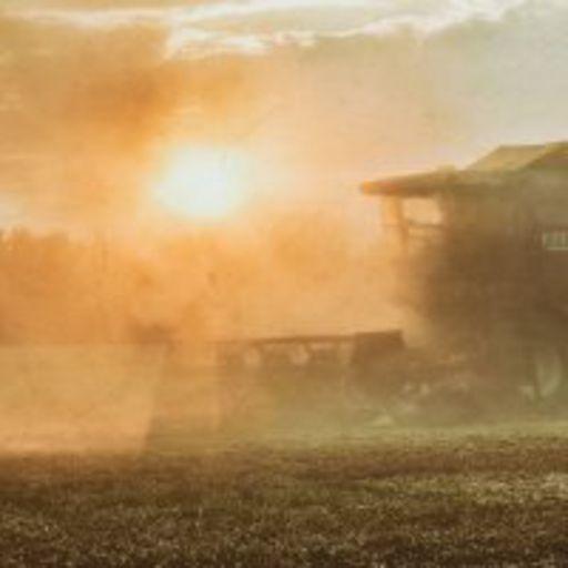 Времена года. Август. Жатва. Seasons. August. Harvest. In the fields.