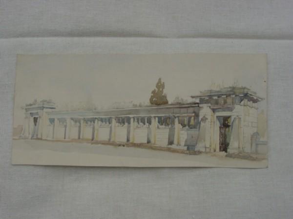 Zeniny Akvareli 017
