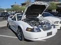 Vegas Mustangs 037