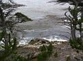 Monterey Trip Aug07 361.jpg