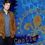 Castle Original 02 800
