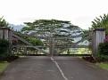Kilauea - Pili Rd10.JPG