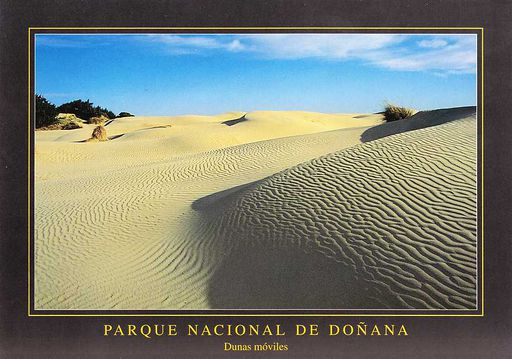 Spain - Doñana Dunes