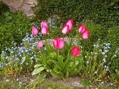 Im Schlossgarten