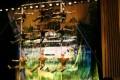 041-shanghai-chinscy akrobaci-img 4785