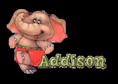 Addison - CuteElephant