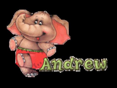 Andrew - CuteElephant