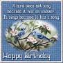 APPYBIRTHDAY ABJ BIRDSSINGVIvi-vi
