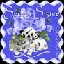 friendsamidroses-secretsister